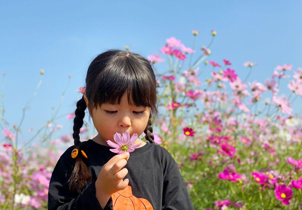 子ども 女の子 花