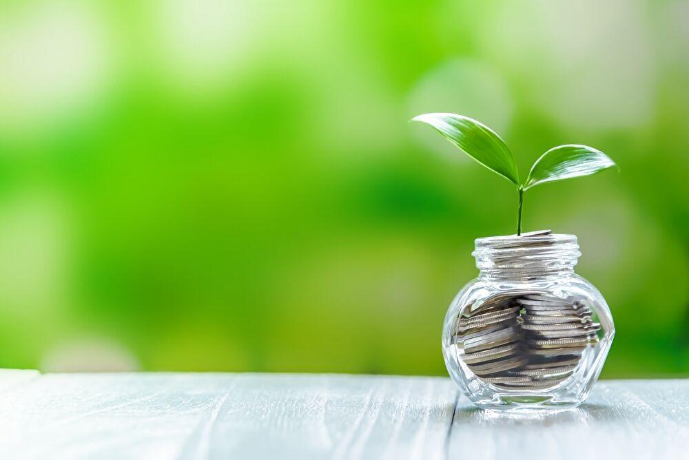 お金 植物 貯金