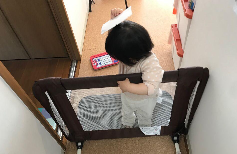 日本育児 おくだけとおせんぼ