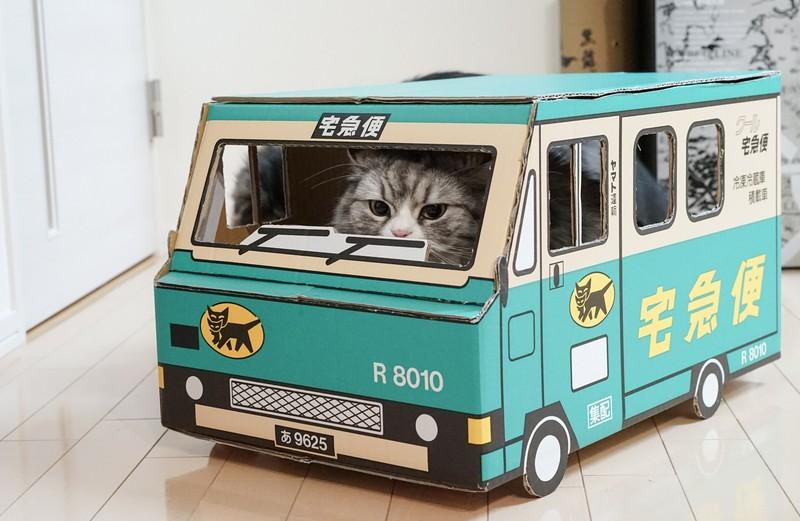 クロネコヤマトの宅急便に乗る猫